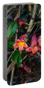 Wild Crossvine Portable Battery Charger