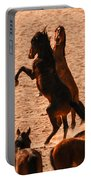 Wild Hooves Portable Battery Charger
