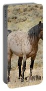 Wild Horses Wyoming - The Mare Portable Battery Charger