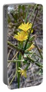 Wild Lettuce - Lactuca Virosa Portable Battery Charger