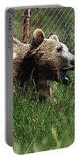 Wild Life Safari Bear Portable Battery Charger