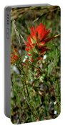 Wild Paint Brush Portable Battery Charger