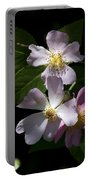 Wild Pink Rambling Rose Portable Battery Charger
