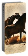 Wild Stallion Clash 3 Portable Battery Charger