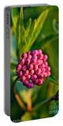 Wild Weed Portable Battery Charger