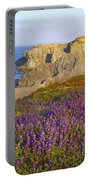 Wildflowers And Rock Formations Along Portable Battery Charger