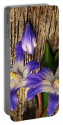 Wildflowers On Wood Portable Battery Charger
