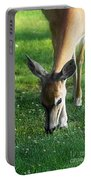 Wildlife Beauty Portable Battery Charger