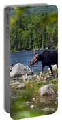 Window To The Moose Portable Battery Charger