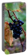 Wine In Time Portable Battery Charger