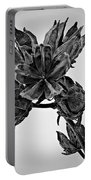 Winter Dormant Rose Of Sharon - Bw Portable Battery Charger