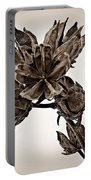 Winter Dormant Rose Of Sharon - S Portable Battery Charger