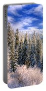 Winter In The Rockies Portable Battery Charger