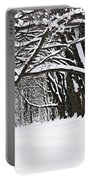 Winter Park With Snow Covered Trees Portable Battery Charger
