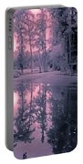 Winterland In The Swamp Portable Battery Charger by DigiArt Diaries by Vicky B Fuller