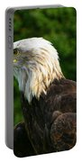 Wisconsin Bald Eagle Portable Battery Charger