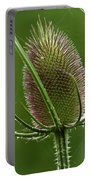 Without Petals Portable Battery Charger