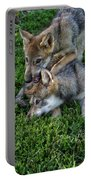 Wolf Play Portable Battery Charger
