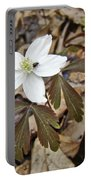 Wood Anemone - Anemone Quinquefolia Portable Battery Charger