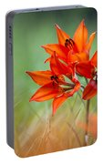 Wood Lily Portable Battery Charger
