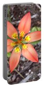 Wood Lily Lilium Philadelphicum Portable Battery Charger
