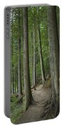 Woodland Forest Path Portable Battery Charger
