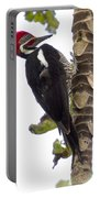 Woodpecker 1 Portable Battery Charger