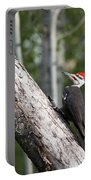 Woodpecker Sizes Me Up Portable Battery Charger