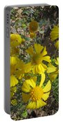 Woolley Ragwort Portable Battery Charger