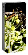 Wrangling Wasps Portable Battery Charger