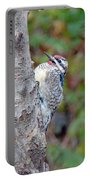 Yellow-bellied Sapsucker    Sphyrapicus Varius Portable Battery Charger