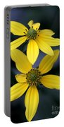 Yellow Duet Portable Battery Charger
