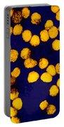 Yellow Fever Virus, Tem Portable Battery Charger