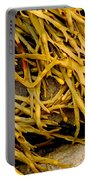 Yellow Kelp Portable Battery Charger