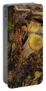 Yellow Mushrooms Portable Battery Charger