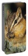 Yellow Pine Chipmunk, Kananaskis Portable Battery Charger