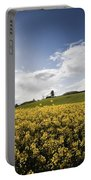 Yellow Rapeseed Field, Newgrange Portable Battery Charger