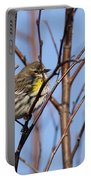 Yellow-rumped Warbler - Placid Portable Battery Charger