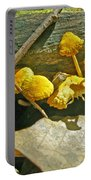 Yellow Sandpaper Mushrooms Portable Battery Charger