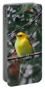 Yellow Songbird Portable Battery Charger