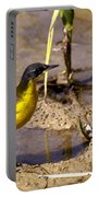 Yellow Wagtail Portable Battery Charger