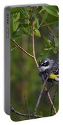 Yellowrumped Warbler Portable Battery Charger