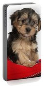 Yorkipoo Pup Portable Battery Charger