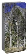Yosemite Reflection Portable Battery Charger