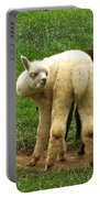You Can't Sneak Up On Alpacas Portable Battery Charger