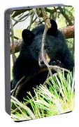 Young Black Bear Portable Battery Charger