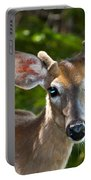 Young Buck 2 Portable Battery Charger