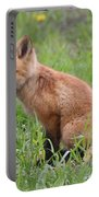 Young Fox Among The Dandelions Portable Battery Charger