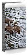Young Geese Portable Battery Charger