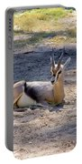 Young Ibex Portable Battery Charger